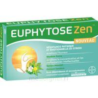 Euphytosezen Comprimés B/30 à Saint-Maximim