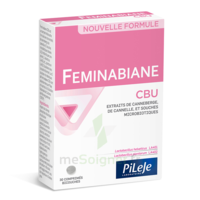 Pileje Feminabiane Cbu 30 Comprimés Bicouches à Saint-Maximim