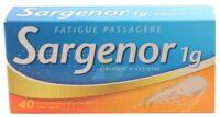 Sargenor Sans Sucre 1 G, Comprimé Effervescent 2t/20 (40)