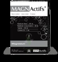 Synactifs Magnactifs Gélules B/60 à Saint-Maximim