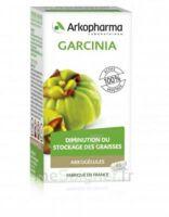 Arkogélules Garcinia Gélules Fl/45 à Saint-Maximim