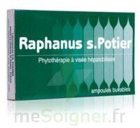 RAPHANUS S.POTIER BIOLOGIQUE, bt 12 à Saint-Maximim