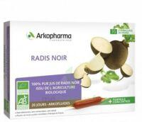 Arkofluide Bio Ultraextract Radis Noir Solution Buvable 20 Ampoules/10ml à Saint-Maximim