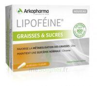 Lipofeine Graisse Et Sucres Gélules B/60