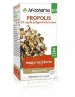 Arkogélules Propolis Bio Gélules Fl/45 à Saint-Maximim