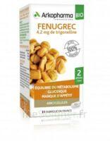 Arkogélules Fenugrec Bio Gélules Fl/40 à Saint-Maximim