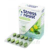 Stress Resist Comprimés Stress & fatigue B/30 à Saint-Maximim
