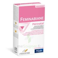 Pileje Feminabiane Périnatal 28 Gélules Blanches Et 28 Gélules Jaunes à Saint-Maximim