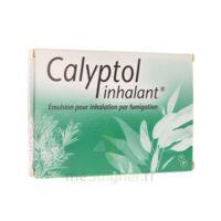Calyptol Inhalant, émulsion Pour Inhalation Par Fumigation à Saint-Maximim