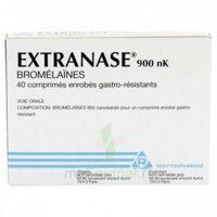 Extranase 900 Nk, Comprimé Enrobé Gastro-résistant à Saint-Maximim