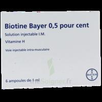 Biotine Bayer 0,5 Pour Cent, Solution Injectable I.m. à Saint-Maximim