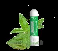 Puressentiel Respiratoire Inhaleur Respiratoire aux 19 Huiles Essentielles - 1 ml à Saint-Maximim