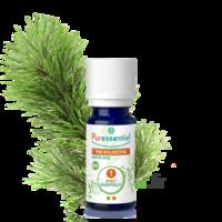 Puressentiel Huiles essentielles - HEBBD Pin sylvestre BIO* - 5 ml à Saint-Maximim