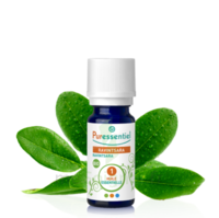 Puressentiel Huiles essentielles - HEBBD Ravintsara BIO* - 5 ml à Saint-Maximim