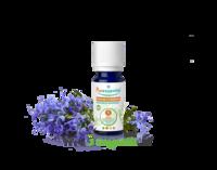 Puressentiel Huiles essentielles - HEBBD Romarin à verbénone BIO* - 5 ml à Saint-Maximim