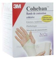 Coheban, Blanc 3 M X 7 Cm à Saint-Maximim