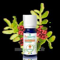 Puressentiel Huiles essentielles - HEBBD Lentisque pistachier - 5 ml à Saint-Maximim