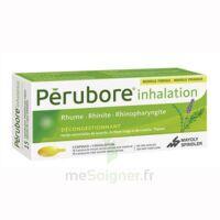 Perubore Caps Inhalation Par Vapeur Inhalation Plq/15 à Saint-Maximim