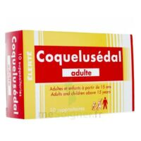 COQUELUSEDAL ADULTES, suppositoire à Saint-Maximim