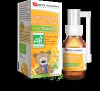 Forte Pharma Propolis Bio Spray Junior 15ml à Saint-Maximim