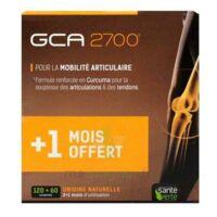 GCA 2700 Comprimés articulations 3*B/60 à Saint-Maximim