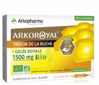 Arkoroyal Gelée royale bio 1500 mg Solution buvable 20 Ampoules/10ml à Saint-Maximim