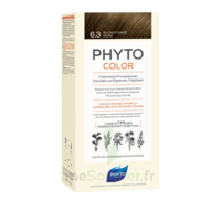 Phytocolor Kit coloration permanente 6.3 Blond foncé doré à Saint-Maximim