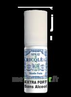 Ricqles Spray Buccal Sans Alcool Menthe 15ml à Saint-Maximim