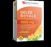 Forte Pharma Gelée Royale 1000 Mg Solution Buvable 20 Ampoules/10ml à Saint-Maximim