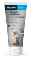 Biocanina Shampooing Sans Rinçage 200ml à Saint-Maximim