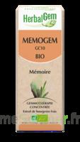 Herbalgem Memogem Solution Buvable Bio 30ml à Saint-Maximim