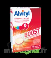 Alvityl Boost Comprimés B/20 à Saint-Maximim