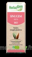 Herbalgem Sinugem Solution Buvable Bio Fl Cpte-gttes/30ml à Saint-Maximim