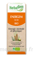 Herbalgem Energem Solution buvable bio Fl cpte-gttes/30ml à Saint-Maximim