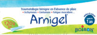 Boiron Arnigel Gel T/120g à Saint-Maximim