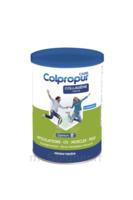 Colpropur Care Neutre Collagène Hydrolysé Pot/300g à Saint-Maximim