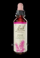 Fleurs De Bach® Original Pine - 20 Ml à Saint-Maximim