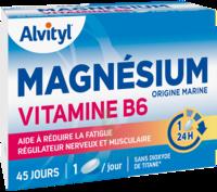 Govital Magnésium Vitamine B6 Comprimés B/45 à Saint-Maximim