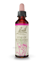Fleurs de Bach® Original Star of Bethlehem - 20 ml à Saint-Maximim