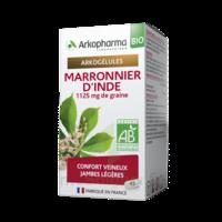 Arkogélules Marronnier D'inde Bio Gélules Fl/45 à Saint-Maximim