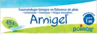 Boiron Arnigel Gel T/45g à Saint-Maximim